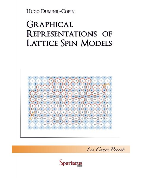 Graphical representations of lattice spin models